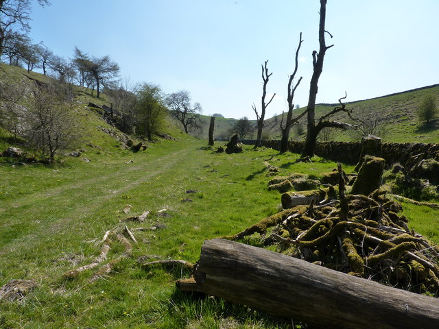 Hay Dale National Nature Reserve