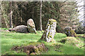 NO7291 : The Nine Stanes Recumbent Stone Circle (6) by Anne Burgess