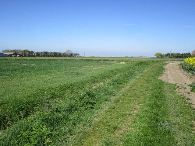 Farm track leading to Thorpe Tilney Drove