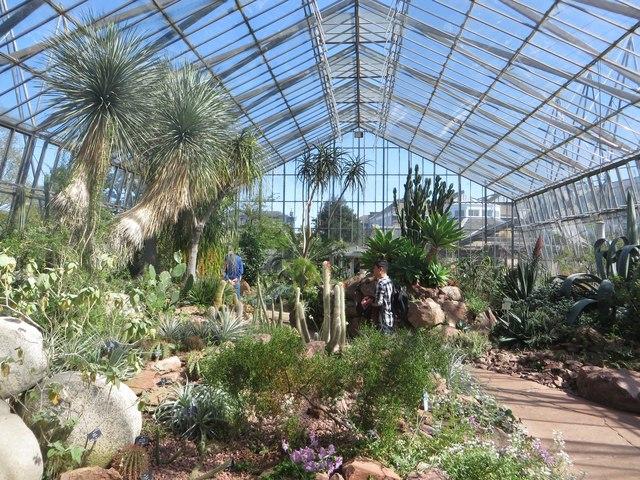 Inside the Glasshouses of the Royal Botanic Garden Edinburgh