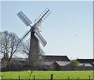 TA0233 : Skidby Mill by Chris Morgan