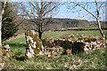NO7294 : Tilquhillie Recumbent Stone Circle (1) by Anne Burgess