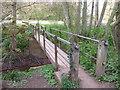 SO8166 : Foot bridge in Shrawley Wood by Jeff Gogarty