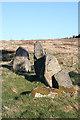 NJ6507 : Tamnagorn Recumbent Stone Circle (4) by Anne Burgess