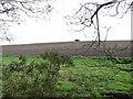 TF8232 : WW2 pillbox in crop field by Syderstone by Evelyn Simak
