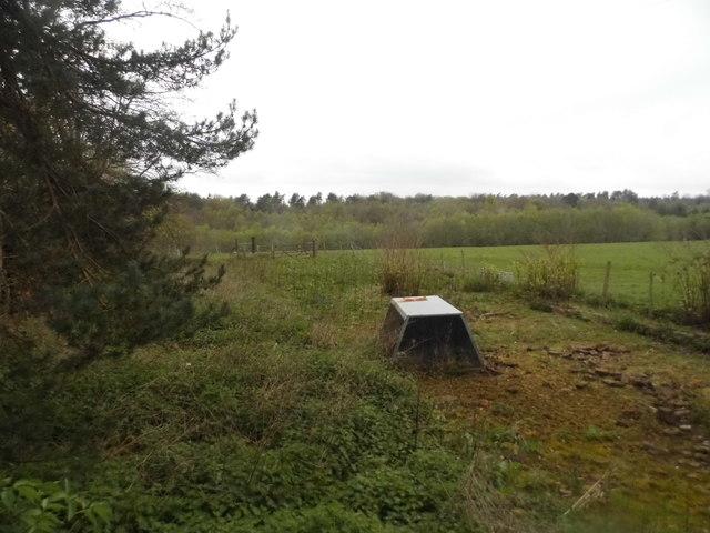 Field by Kings Farm, Balcombe