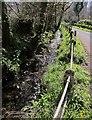 SX2084 : Laneside stream, St Clether by Derek Harper