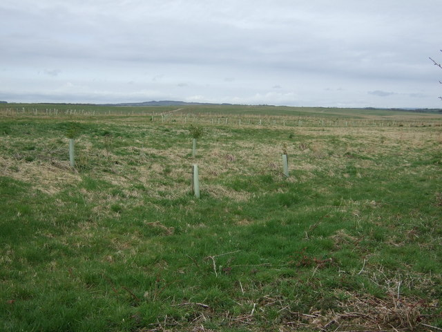 Farmland, Stobswood