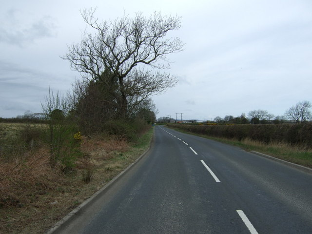 Minor road towards Felton