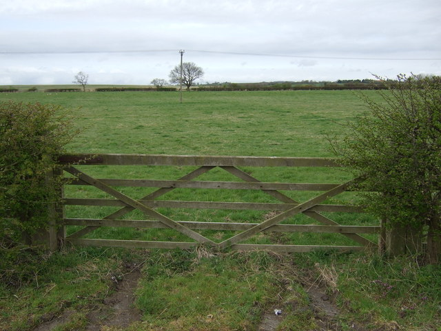 Field entrance, West Stobswood
