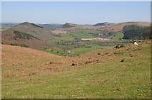 SO2556 : View to the north-east from side of Hergest Ridge by Philip Halling