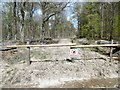 SU3203 : Stubby Copse Inclosure, closed road by Mike Faherty