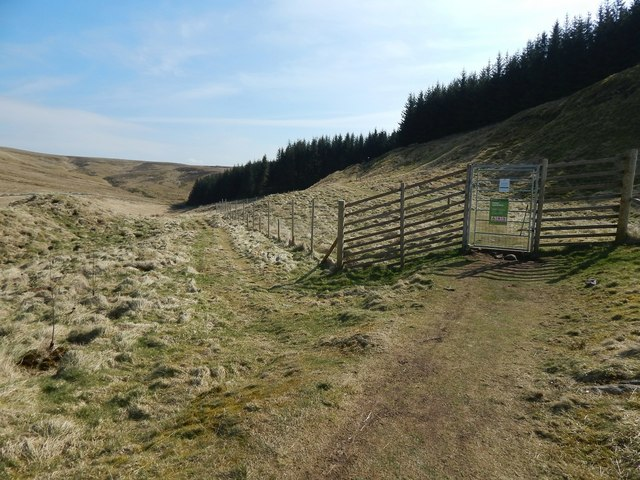 Lang Craigs Woodland: a new fence