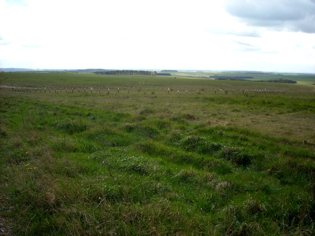 Disc barrow, Weather Hill