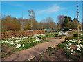 NY3956 : Garden of Memories, Bitts Park, Carlisle by Malc McDonald