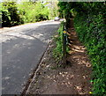 SO5112 : Offa's Dyke Path diverges from Staunton Road near Monmouth by Jaggery