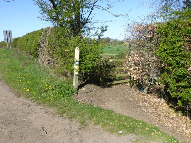 Footpath to Morpeth Common
