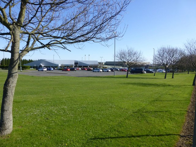 Lawns surrounding offices