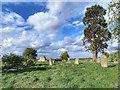 NZ3809 : Ruin, St Johns Church, High Worsall by Mick Garratt