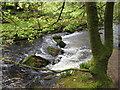 SX2268 : Cascades at Golitha Falls on the River Fowey by Gareth James