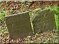 SK6821 : Belvoir Angel headstones, Grimston Churchyard by Alan Murray-Rust