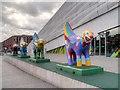 SJ3390 : Superlambananas outside the Museum of Liverpool by David Dixon