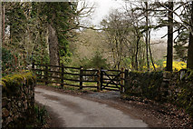 NY1700 : Beckfoot, Eskdale by Peter Trimming