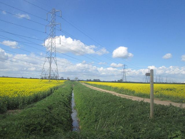 Footpath to Old Farm