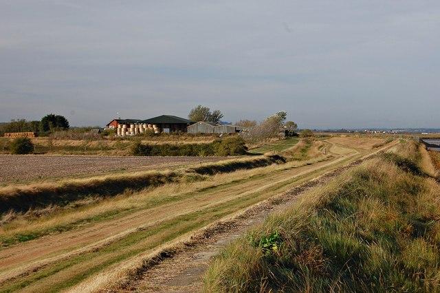 Haymaking on the seawall