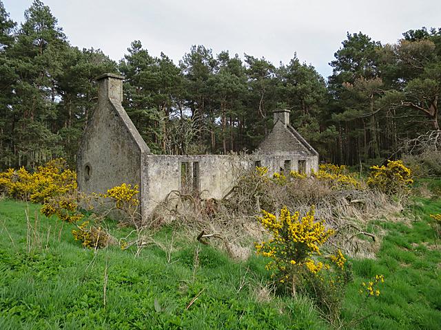 Ruin near Nether Unthank