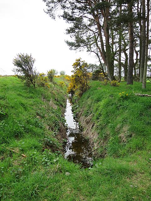 Ditch near Nether Unthank