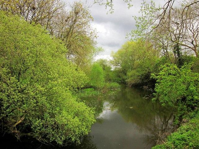 Backwater, King's Sedgemoor Drain