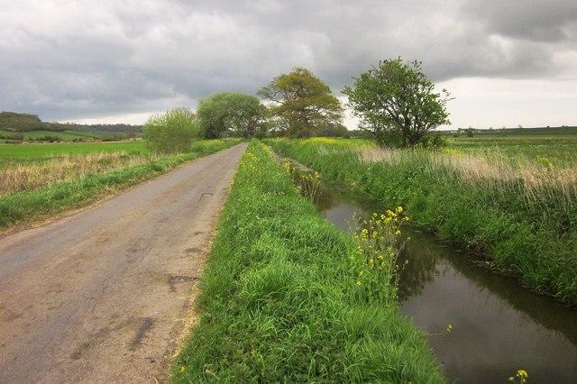 Road across West Moor