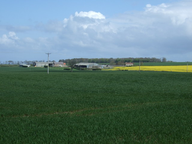 Crop field towards Kentstone