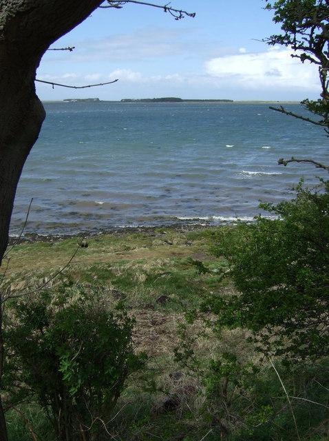 A glimpse of the sea
