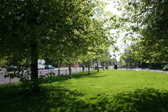 Ibrox greenspace