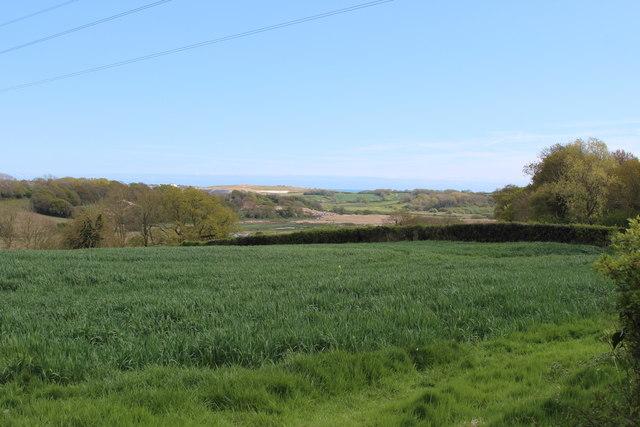 Field by Byne's Farm