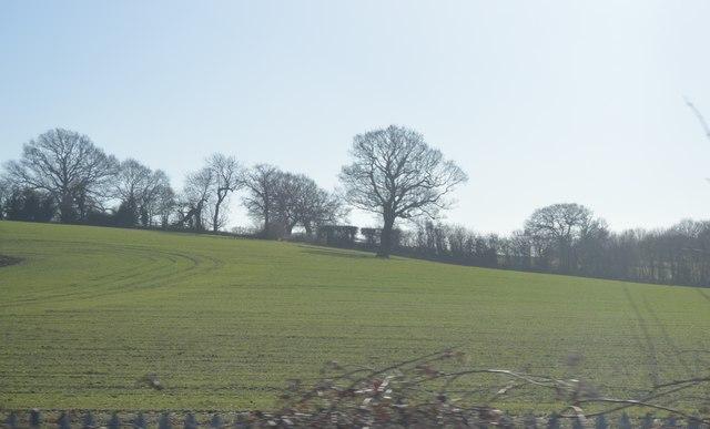 Farmland near Robinson's End