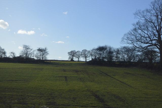 Farmland near Daw Mill Colliery
