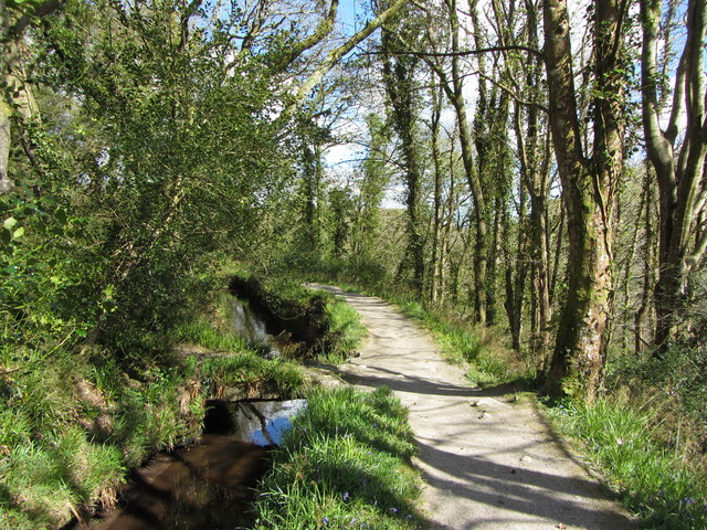 Path beside the Fowey Consols Leat