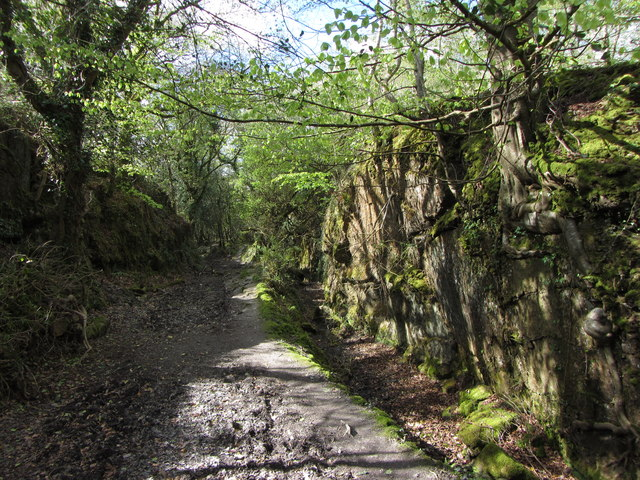 Old mineral tramway route towards Luxulyan