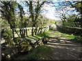 SX0557 : Treffry Viaduct by Gareth James