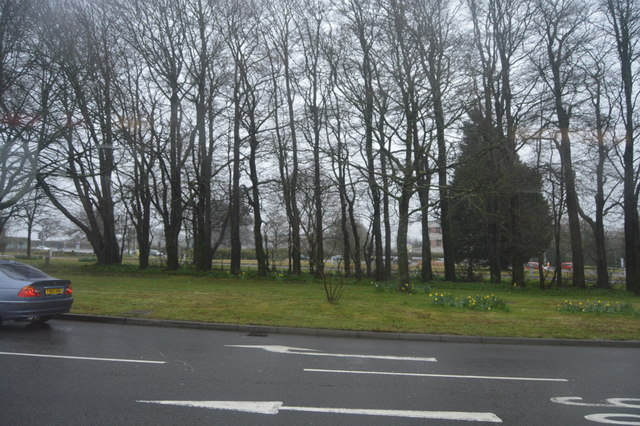 Wooded central reservation, A386