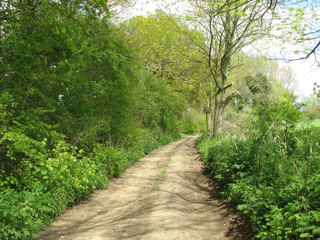 Footpath to Claxton