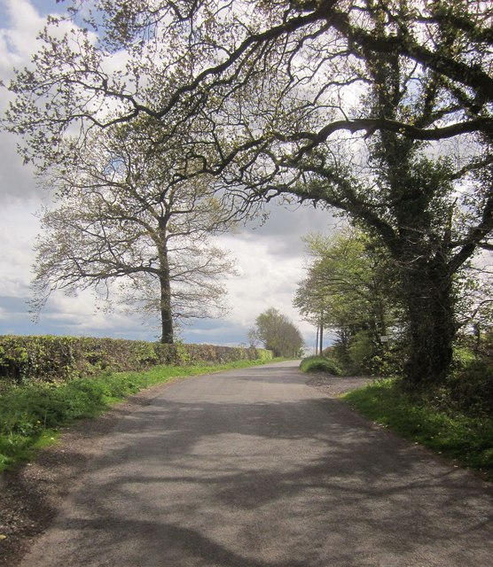 Road on Buckland Hill