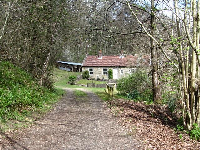 Lane to Glaisdale Mill