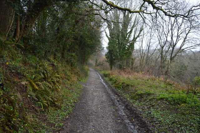 Footpath to West Wood