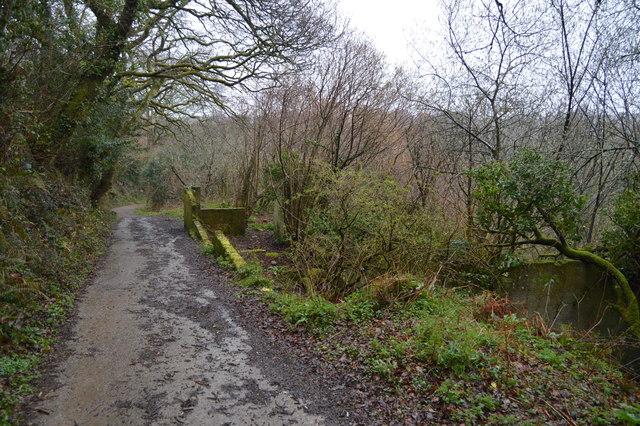 Ruin, West Wood