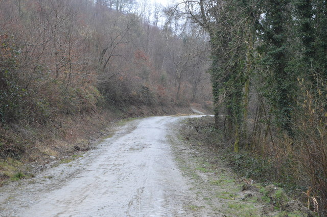 Path into the Plym Valley