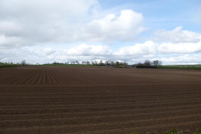 Ploughed fields near Rudston